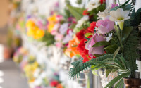 Graves with flowers on a wall of a European cemetery. Vercelli, Italy, Europe.